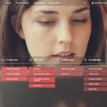 ServiceNow Service Portal consultancy